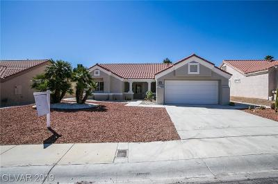 Las Vegas Single Family Home For Sale: 8825 Sandspring Drive