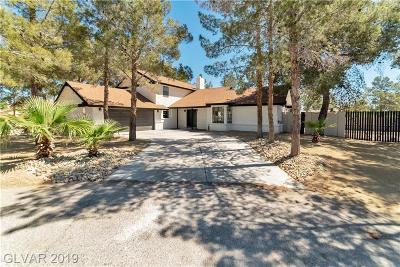 Clark County Single Family Home For Sale: 6055 Brooks Avenue