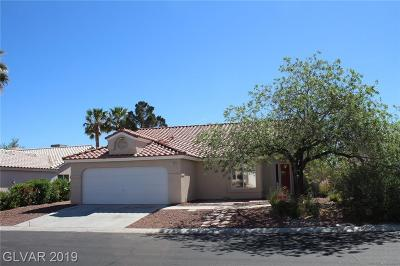 Las Vegas Single Family Home Under Contract - Show: 7204 Hawk Haven Street