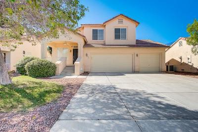 Single Family Home Under Contract - No Show: 857 Sparkle Ray Avenue