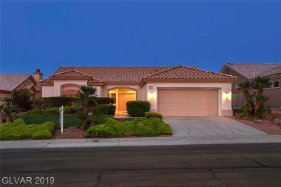 Las Vegas Single Family Home For Sale: 2812 Childress Drive