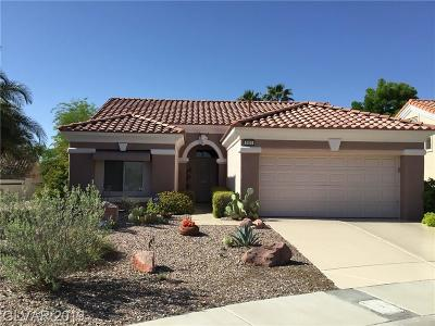 Single Family Home Under Contract - No Show: 9501 Salem Hills Court