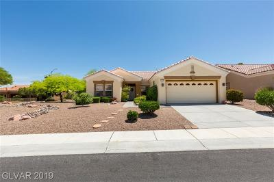 Single Family Home For Sale: 10705 Clarion Lane