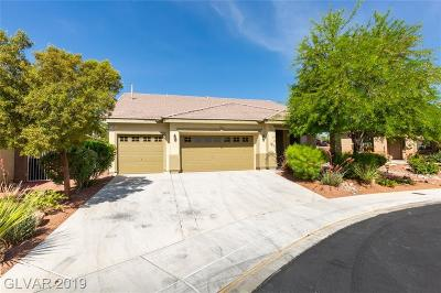 Single Family Home Under Contract - No Show: 8133 Devils Canyon Street