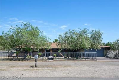 Clark County Single Family Home For Sale: 4476 West Eldorado Lane