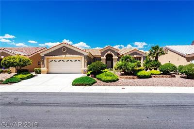 Las Vegas Single Family Home For Sale: 2125 Red Dawn Sky Street