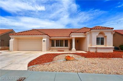 Las Vegas Single Family Home For Sale: 8612 Bayland Drive