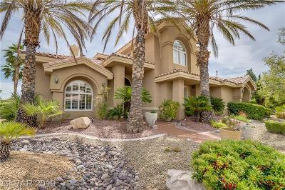 Las Vegas Single Family Home For Sale: 2104 Grand Island Court