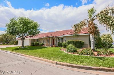 HENDERSON Single Family Home For Sale: 250 Rochell Drive