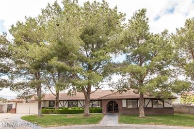Spring Valley Single Family Home For Sale: 6025 Bronco Street