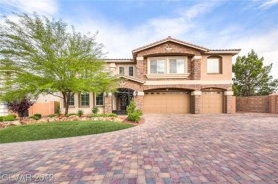 Las Vegas  Single Family Home For Sale: 11068 Gaelic Hills Drive