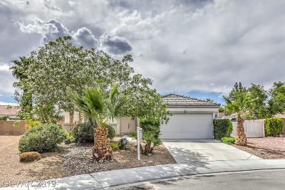North Las Vegas Single Family Home Under Contract - No Show: 5835 Harvest Creek Street