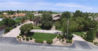 Las Vegas Single Family Home For Sale: 358 Torino Avenue