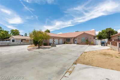 Clark County Single Family Home For Sale: 3325 Jones Boulevard