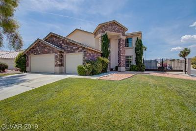 Centennial Hills Single Family Home For Sale: 6213 Peggotty Avenue