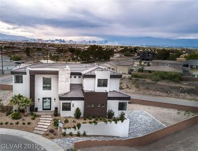 Henderson Single Family Home Under Contract - No Show: 380 Cactus Stream Court