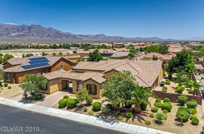 Las Vegas Single Family Home For Sale: 8500 Glacier Point Street