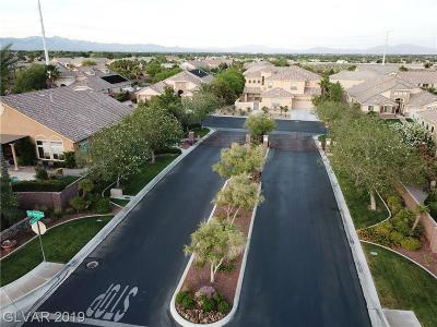 LAS VEGAS Single Family Home For Sale: 4700 El Presidente Drive