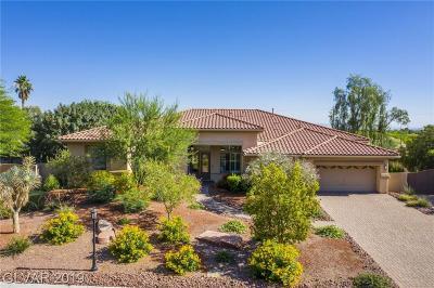 Clark County Single Family Home For Sale: 2724 La Casita Avenue