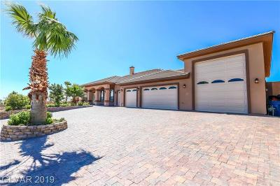 Las Vegas Single Family Home For Sale: 9563 Lone Mountain Road