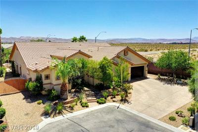 Las Vegas Single Family Home For Sale: 3781 Riley Ann Avenue