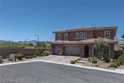 Single Family Home For Sale: 497 Paso De Montana Street