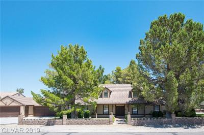 Las Vegas Single Family Home For Sale: 8580 Ann Road