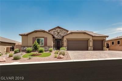 Las Vegas Single Family Home For Sale: 9801 Summer Bliss Avenue