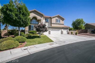 Las Vegas Single Family Home For Sale: 6124 Exquisite Avenue