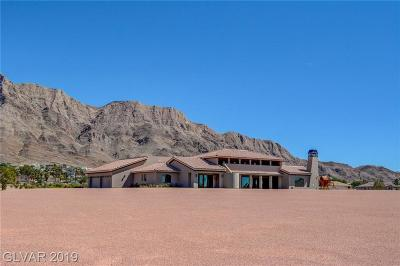 Boulder City, Henderson, Las Vegas, North Las Vegas Single Family Home For Sale: 601 Hollywood Boulevard