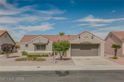 Las Vegas Single Family Home For Sale: 2440 Desert Glen Drive