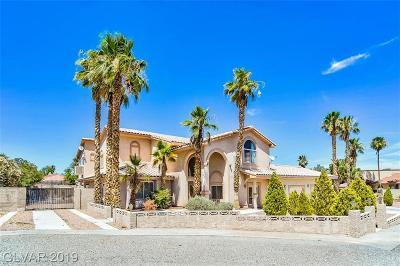 Las Vegas Single Family Home For Sale: 4691 North Tee Pee Lane