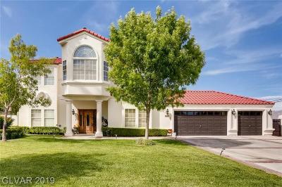 Single Family Home For Sale: 8860 La Mancha Avenue