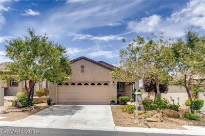Single Family Home Under Contract - No Show: 2349 Celestial Moon Street