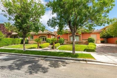Henderson Single Family Home For Sale: 2257 Coral Ridge Avenue