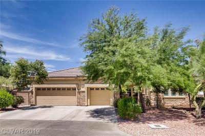 North Las Vegas Single Family Home Under Contract - No Show: 3806 Internet Avenue