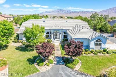 Centennial Hills Single Family Home For Sale: 8640 Horse Drive