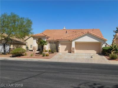 Henderson Single Family Home For Sale: 246 Ventana Village Lane