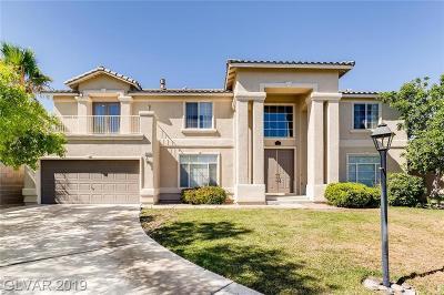 Las Vegas Single Family Home For Sale: 8820 Buffalo Cloud Avenue