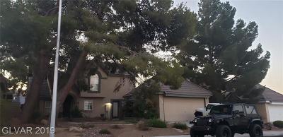 Blue Diamond, Boulder City, Henderson, Las Vegas, North Las Vegas, Pahrump Single Family Home Under Contract - No Show: 2604 Trotwood Lane