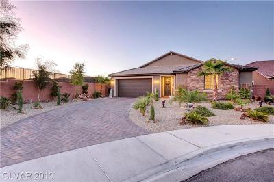 Clark County Single Family Home For Sale: 9684 Ashlynn Peak Court