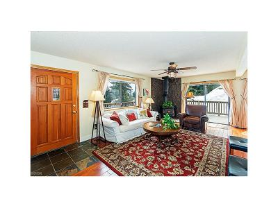Incline Village Single Family Home For Sale: 973 Dorcey Drive