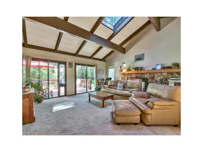 Incline Village Single Family Home For Sale: 130 Mayhew Circle
