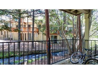 Incline Village Condo/Townhouse For Sale: 989 Tahoe Boulevard #33
