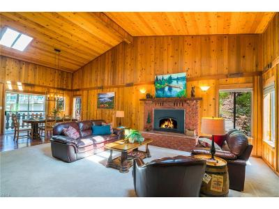 Incline Village Single Family Home For Sale: 1032 Lucerne Way