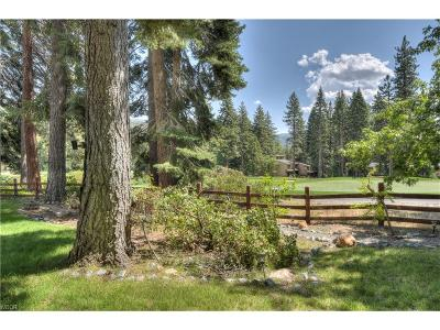 Incline Village Single Family Home For Sale: 565 Putter Court
