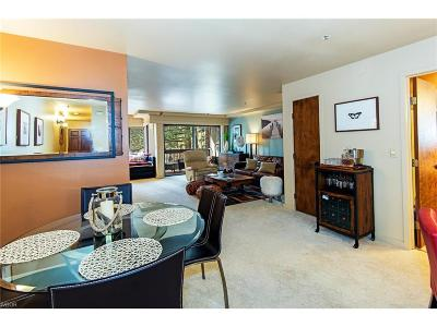 Incline Village Condo/Townhouse For Sale: 333 Ski Way #260