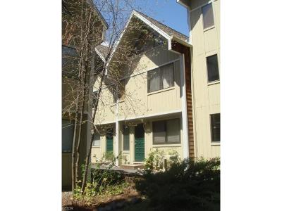 Incline Village Condo/Townhouse For Sale: 989 Tahoe Boulevard #48