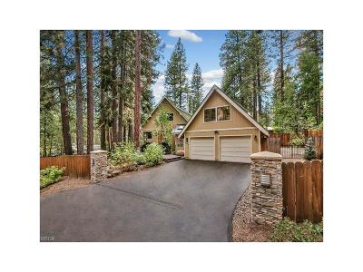 Incline Village Single Family Home For Sale: 225 Allen Way