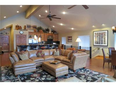 Incline Village Single Family Home For Sale: 1224 Styria Way